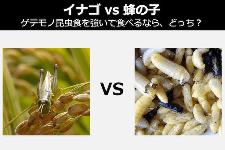 【イナゴ vs 蜂の子】ゲテモノ昆虫食を食べなきゃダメなら、どっち?人気投票中!