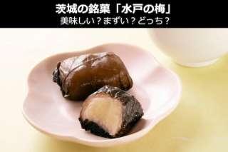 【水戸の梅】茨城の銘菓「水戸の梅」は美味しい?まずい?どっち?人気投票!お土産&名物