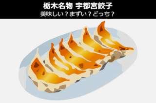 【宇都宮餃子】美味しい?まずい?どっち?人気投票!栃木県のお土産&名物
