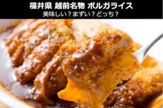 【ボルガライス】美味しい?まずい?どっち?人気投票!福井県越前市のお土産&名物