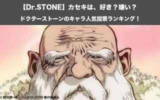 【Dr.STONE】カセキは、好き?嫌い?|ドクターストーンのキャラ人気投票ランキング!
