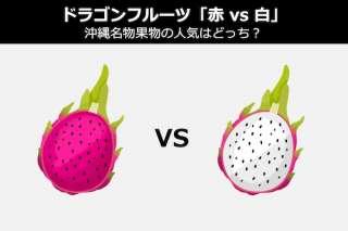 ドラゴンフルーツ「赤 vs 白」沖縄名物果物の人気はどっち?違い比較&人気投票