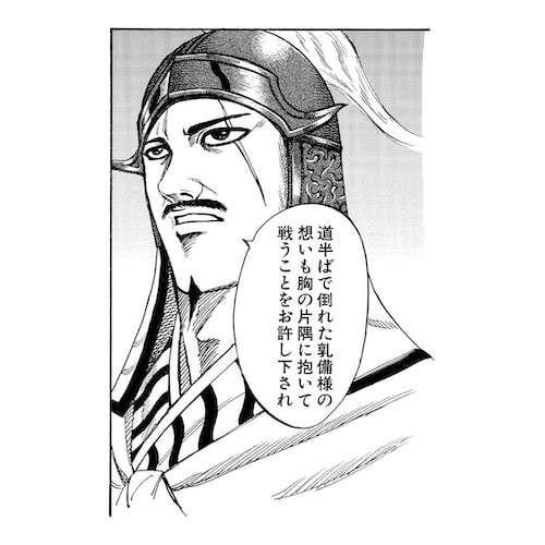 【キングダム】楚水(そ すい)の経歴