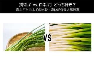 【青ネギ vs 白ネギ】どっち好き?青ネギと白ネギの比較・違い紹介&人気アンケート