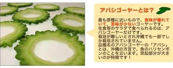 フタバ種苗 沖縄 あばしゴーヤー (苦瓜) 種・小袋詰(10ml)
