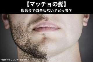 【マッチョの髭】似合う?似合わない?どっち?人気アンケート調査