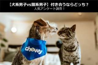 【犬系男子vs猫系男子】付き合うならどっち?人気アンケート調査!