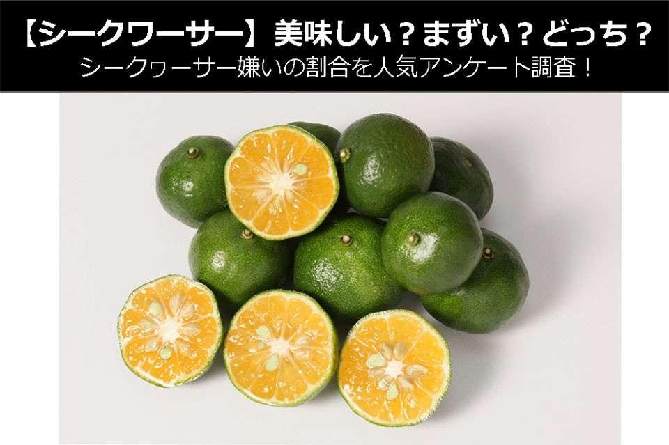 【シークワーサー】美味しい?まずい?どっち?シークヮーサー嫌いの割合を人気アンケート調査!