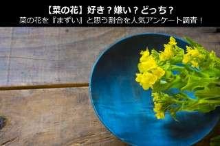 【菜の花】好き?嫌い?どっち?菜の花を『まずい』と思う割合を人気アンケート調査!