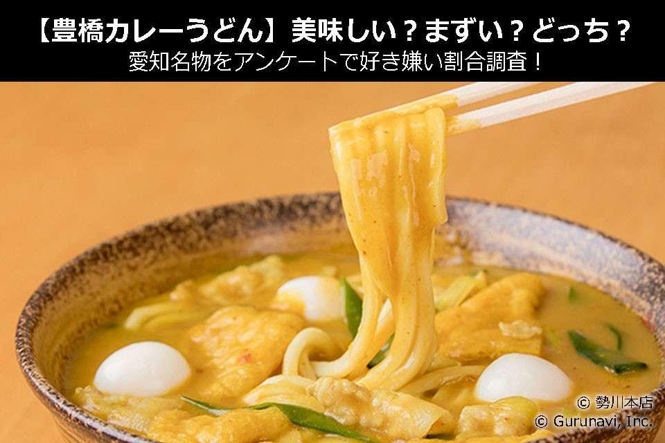 【豊橋カレーうどん】美味しい?まずい?どっち?愛知名物をアンケートで好き嫌い割合調査!