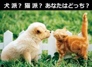 【ド定番人気投票】『犬派』vs『猫派』どっちが好き?アンケート実施中!!