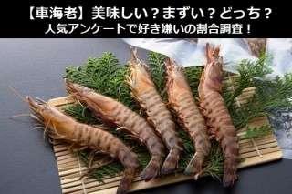 【車海老】美味しい?まずい?どっち?人気アンケートで好き嫌いの割合調査!
