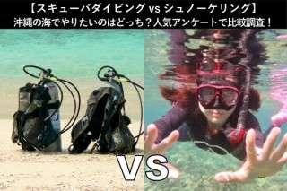 【スキューバダイビングvsシュノーケリング】沖縄の海でやりたいのはどっち?人気アンケートで比較調査!