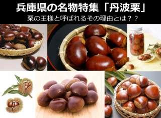 【丹波栗】美味しい?まずい?どっち?人気投票!兵庫県のお土産&名物