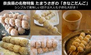 【奈良県のお土産・名物】現地でしか味わえない「きなこだんご」は幻の奈良名物