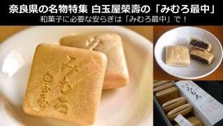 【奈良県のお土産・名物】現地でしか買えない幻の和菓子「みむろ最中」