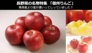 【長野県 お土産・名物】「信州りんご」は蜜濃く柔らかい!品種も多く旬なりんごを長い期間楽しめる!