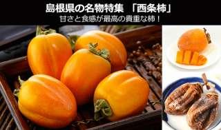 西条柿は、受験戦争より競争率が激しい?甘さと食感が最高級!~島根県 お土産・名物~