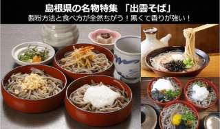 【出雲そば】美味しい?まずい?どっち?人気投票!島根県のお土産&名物