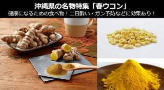 「春ウコン」は健康になるための食べ物!~二日酔い・ガン予防に春ウコンは最適~|沖縄県 お土産・名物