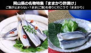 【岡山県 お土産・名物】ご飯が止まらない「ままかり酢漬け」は、お酒も止まらない?