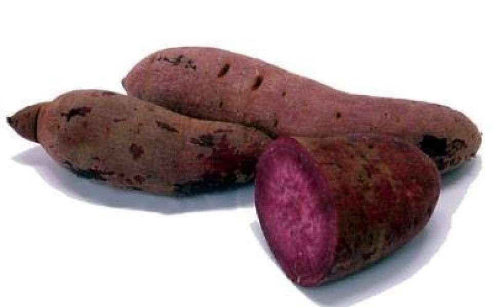 「サツマイモ」と「紅芋」と「紫芋」の違い