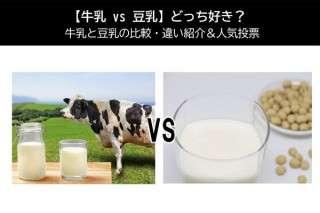 【牛乳 vs 豆乳】どっち好き?牛乳と豆乳の人気投票