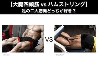 【大腿四頭筋 vs ハムストリング】足の二大筋肉どっちが好き?