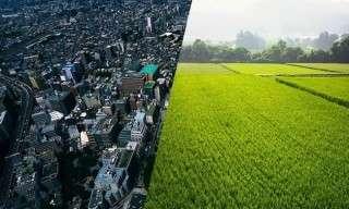 将来は『田舎暮らし』?『都会暮らし』?どっち?