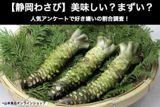 【静岡わさび】美味しい?まずい?どっち?
