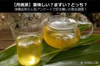 【月桃茶】美味しい?まずい?どっち?沖縄名茶の人気アンケートで好き嫌いの割合調査!