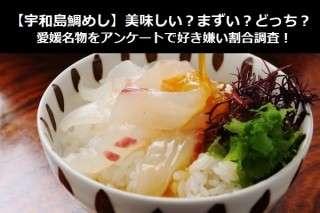 【宇和島鯛めし】美味しい?まずい?どっち?