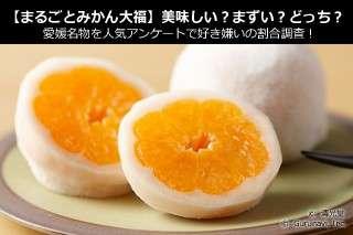 【まるごとみかん大福】美味しい?まずい?どっち?愛媛名物を人気アンケートで好き嫌いの割合調査!