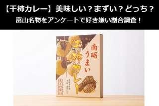【干柿カレー】美味しい?まずい?どっち?