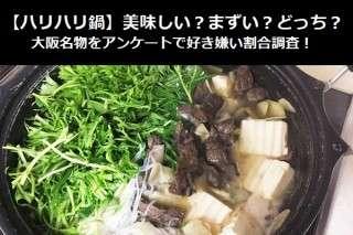 【ハリハリ鍋】美味しい?まずい?どっち?