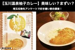 【玉川温泉柚子カレー】美味しい?まずい?どっち?