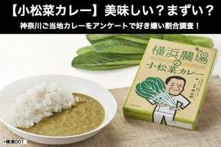 【小松菜カレー】美味しい?まずい?どっち?