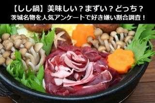 【しし鍋】美味しい?まずい?どっち?