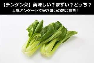 【チンゲン菜】美味しい?まずい?どっち?