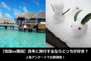 【雪国vs南国】真冬に旅行するならどっちが好き?人気アンケートで比較調査!