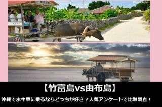【竹富島vs由布島】沖縄で水牛車に乗るならどっちが好き?人気アンケートで比較調査!