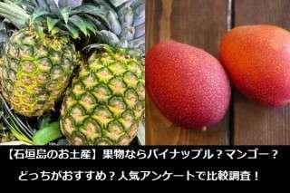 【石垣島のお土産】果物ならパイナップル?マンゴー?どっちがおすすめ?人気アンケートで比較調査!